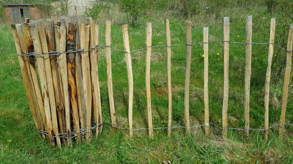 Chestnut Paling Fencing