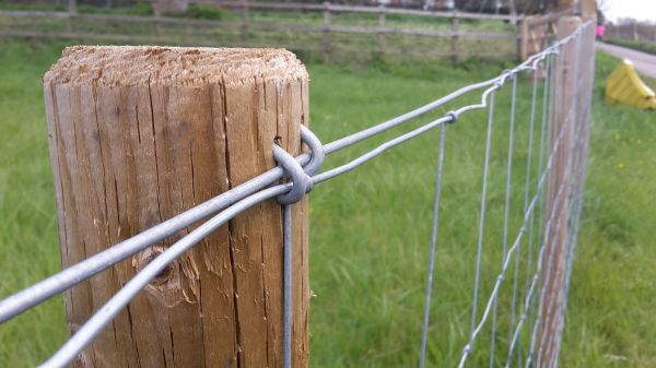 Galvanised Wire Mesh | Welded Mesh Panels & Rolls | Fencing Netting