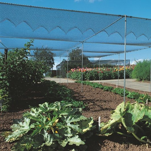 Plastic Garden Netting High Strength Plastic Netting Fences
