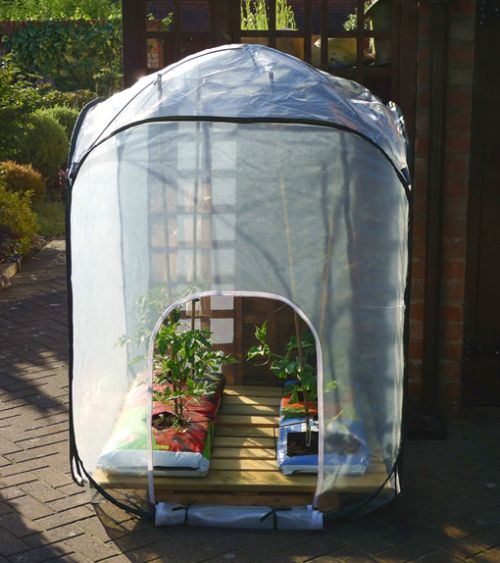 Polythene Pop-Up Fruit & Veg Greenhouses