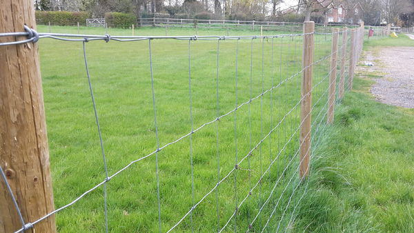 Agricultural Wire Fencing