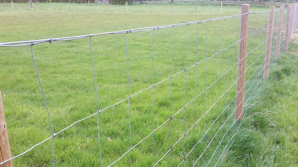 Galvanised Stock Fencing