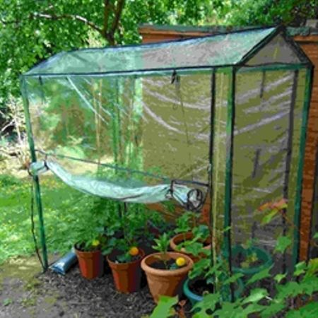 Tomato Greenhouse Shelter