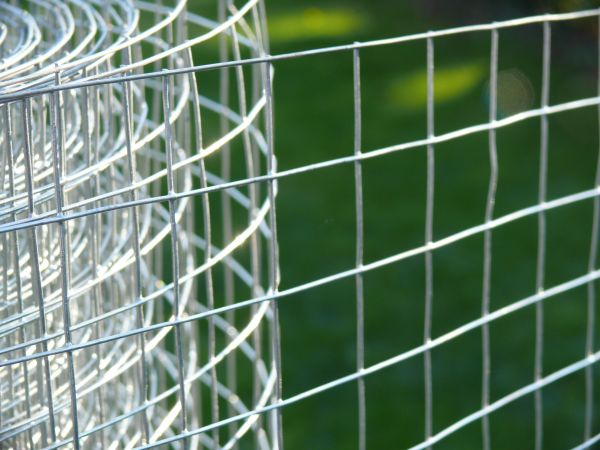 Welded wire mesh galvanised steel fencing rolls welded wire mesh galvanised light steel wire greentooth Image collections