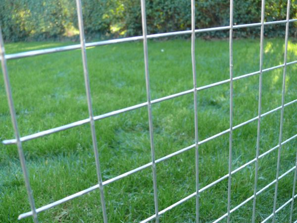Cat Fencing / Enclosures