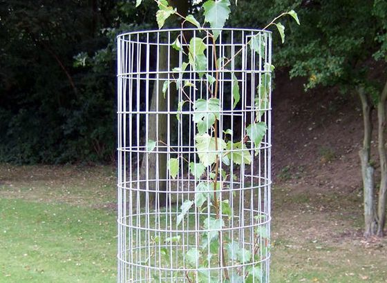 Tree guards galvanised steel protection mesh