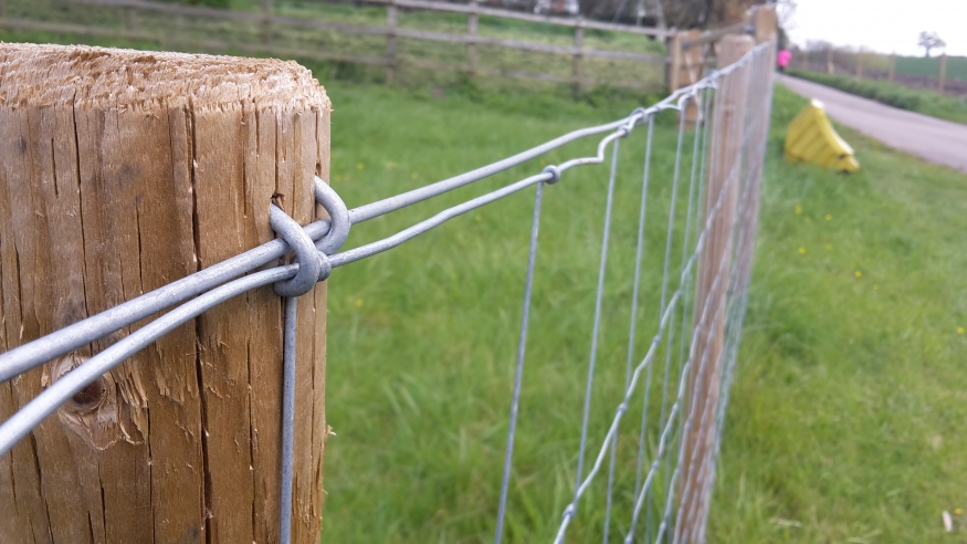 20mm Galvanised Fencing Staples Steel U Nail Fence