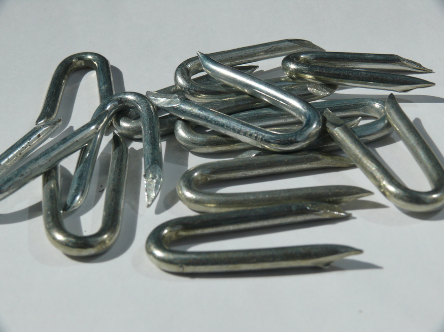 Galvanised Staples U Nail Galv Fence Post Wire 15mm 20mm 25mm 30mm 40mm