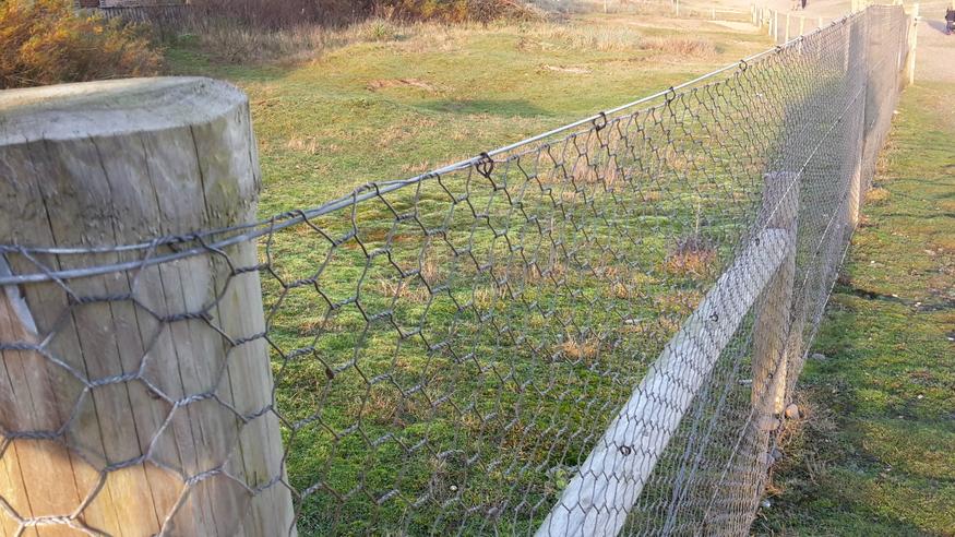 25m x 0.6m 25mm Wire Net Fencing Hex Chicken 600mm HEXANGONAL FENCE MESH