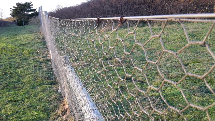 Hexagonal Wire Mesh : Cm galvanised wire netting mm mesh chicken