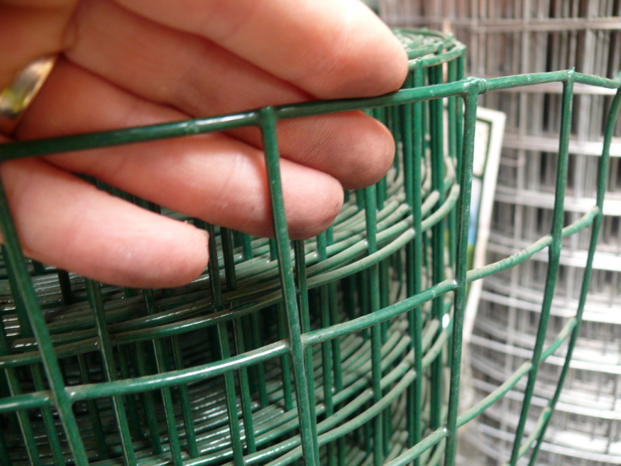 Thick PVC Coated Weld Wire Mesh Fencing 0.9x25m | 50mm / 2"|875|656|?|en|2|def22329ad3aa2e03c6c62317f047d36|False|UNLIKELY|0.33975791931152344
