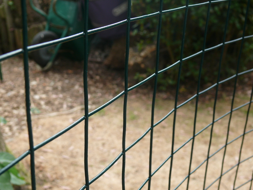 Pvc Coated Weld Wire Mesh Fencing 1 2m 4ft X 30m 50mm 2 Hole 16 14swg