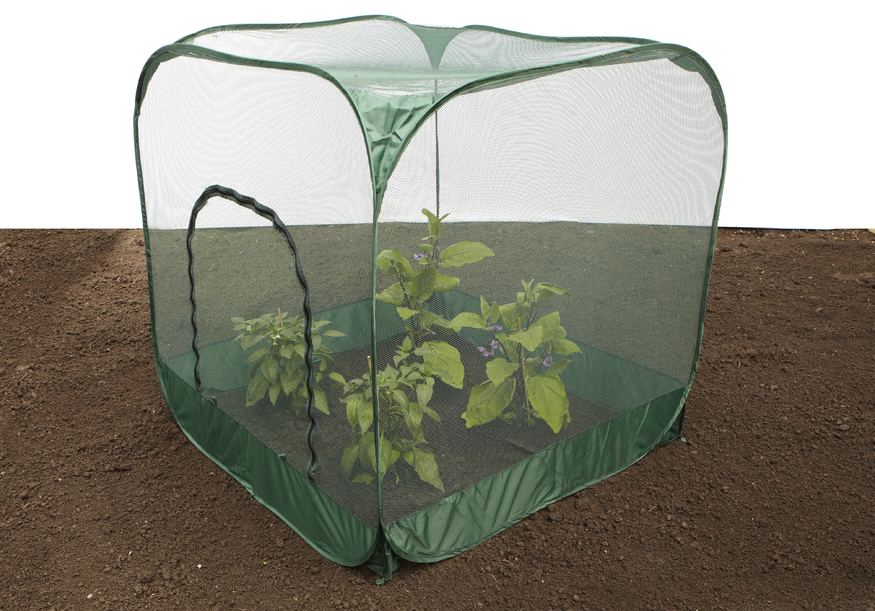 Pop Up Fruit Amp Vegetable Protection Cage With Garden