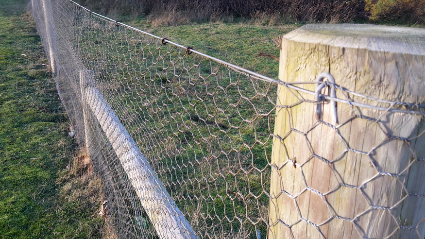 M ft rabbit netting galvanised steel wire fencing