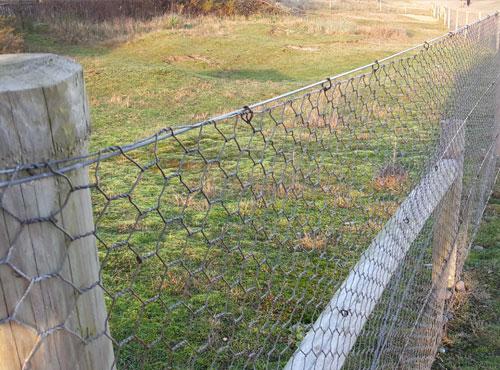 Rabbit Fencing Netting | 1.2mx50m Galvanized Wire Mesh| 31mm