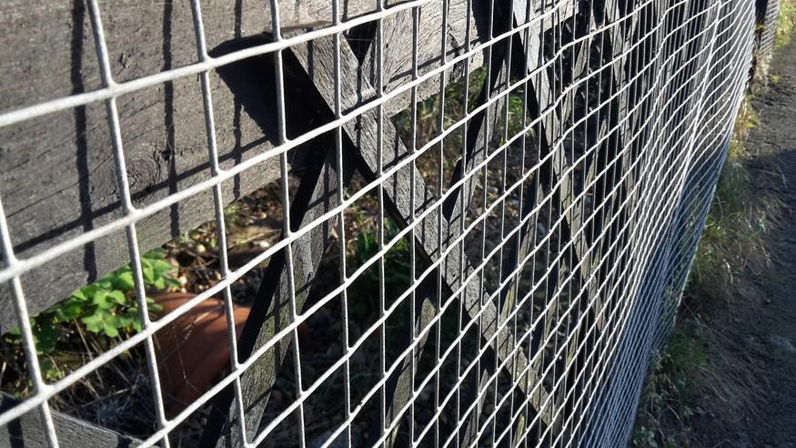 Galvanised Welded Wire Steel Mesh 1 83mx30m 6ft Fencing