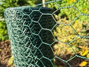 Green PVC Wire Netting - 1m x 25m roll / 25mm Mesh Hole