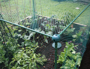 Fruit & Vegetable Cage - Anti-Bird Netting ~ 2m x 1m x 1.25m