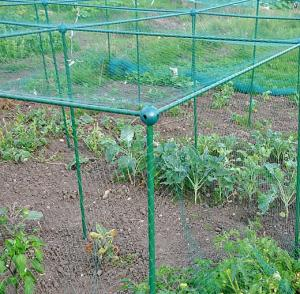 Veg & Fruit Protection Cage ~ 20mm Bird Netting 2.5mx1.25mx1.25m