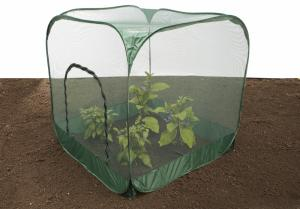 Pop-Up Fruit & Vegetable Protection Cage - Netting 1.25m(LxWxH)