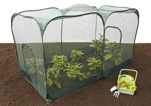 Double Pop-Up Fruit & Vegetable Netting Cage - 2.5mx1.25mx135cm(H)