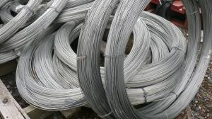 Fencing Line Wire Galvanised ~ 4mm dia. x 50m coil ~ 5kg/8swg