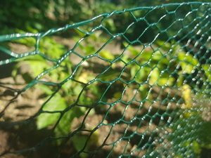 Green PVC Wire Netting - 1m x 50m roll / 13mm Mesh Hole