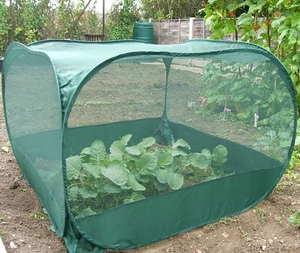 Pop-Up Fruit & Vegetable Protection Cage - Netting ~ 1.25mx1.25mx75cm (High)