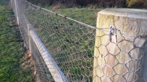 Rabbit Netting Fencing ~ 900mm x 50m ~ 31mm Mesh ~ Budget