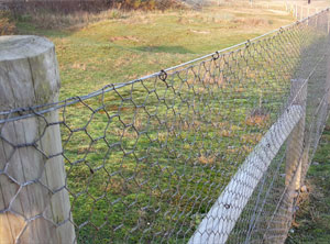 Galvanised Wire Hex Netting ~ 1.8m x 50m ~ 25mm mesh ~ 20 swg