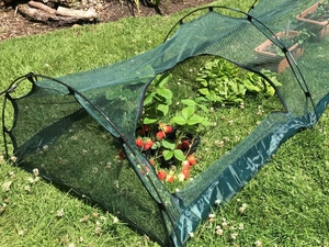 Cloche Grow Tunnel 4mm Netting ~ 3m long x 0.75m wide x 0.5m high