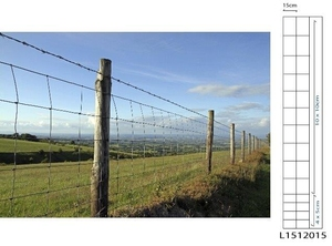 Galvanised Stock Fence ~ L15/120/15 ~ 1.2m x 50m 2.5mm/2mm wire