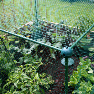 Fruit & Crop Protection Netting Cage Kit - 4m x 1m x 1.87cm tall