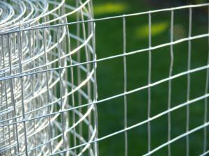 "Welded Wire Mesh 3ft x 6m Roll 1""x1"" inch holes / 19 swg (1mm)"