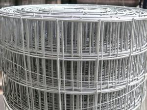 Heavy Duty Weld Mesh 1.8m(6ft) x 25m ~ 50mm holes ~ 14 swg/2mm