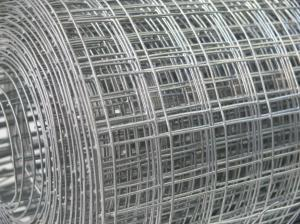 Welded Wire Mesh 2ft x 30m Roll 1 inch holes / 16 swg (1.6mm)