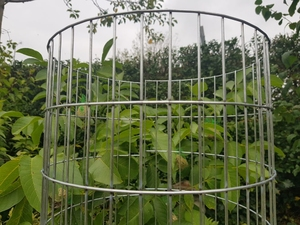 "Welded Mesh Tree Guards - 1.8m x 300mm Dia. (3"" x 1"" Aperture)"